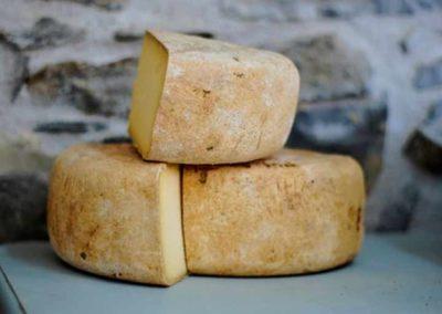 Catalan Cheese tour
